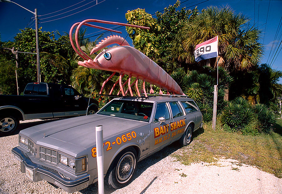 Shrimp Sedan