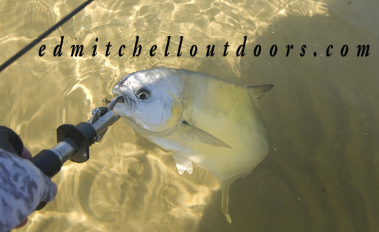 Pompano on a 6-Weight Fly Rod