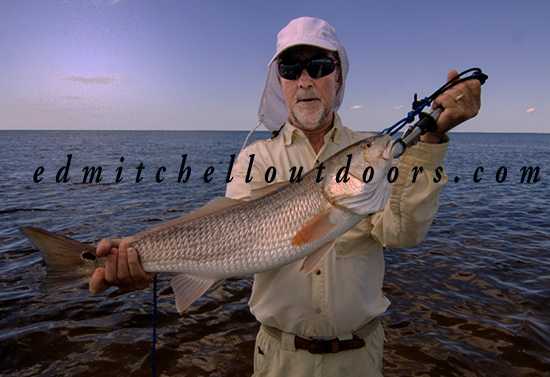 Pete's Redfish