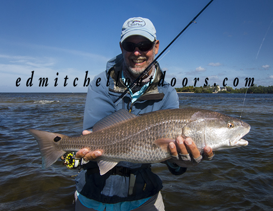 Dave's Winter Redfish