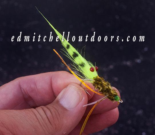 Size 2# shrimp fly