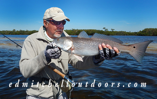 Redfish on a Merkin