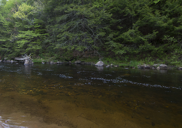 Salmon River in Connecticut